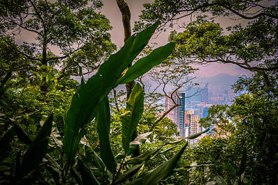 Photograph - Hong Kong From Victoria Peak by Robert Knight