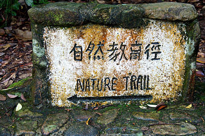 Hong Kong, Tai Po Kau Nature Park Trail Art Print by Richard Wright