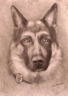 Police Dog Drawing - Honor by Jack Skinner