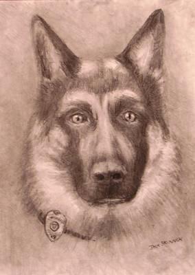 German Shepard Drawing - Honor by Jack Skinner