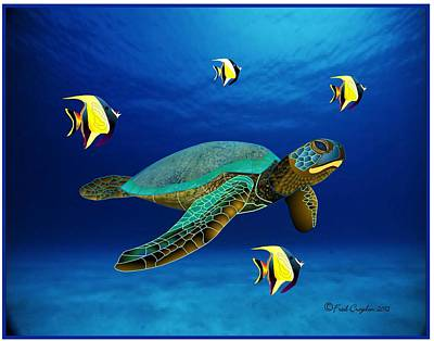 Green Sea Turtle Drawing - Honu In Ocean by Fred Croydon