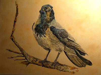 Crow Painting - Hooded Crow by Juan  Bosco