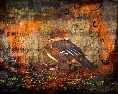 Digital Art - Hooded Merganser by J Larry Walker