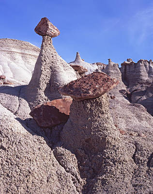 Photograph - Hoodoo Log by Tom Daniel