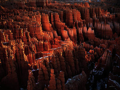 Photograph - Hoodoo Sandstone At Sunrise by Leland D Howard