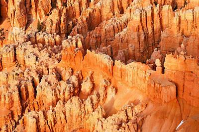 Photograph - Hoodoo Wonderland - Bryce Canyon by Gregory Ballos