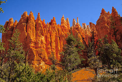 Hoodoos Along The Trail Art Print