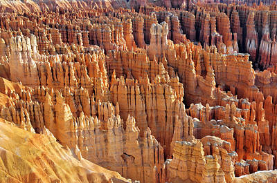 Art Print featuring the photograph Hoodoos Of Bryce Canyon by Dan Myers