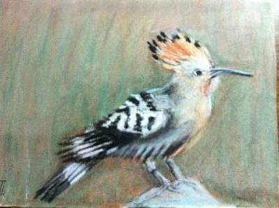 Painting - Hoopoe by Giti Ala