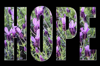 Photograph - Hope In Spanish Lavender On Black From The Faith Hope And Love Series by Karen Stephenson