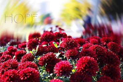 Photograph - Hope by Milena Ilieva