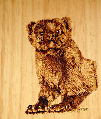 Pyrography - Hope's Marten by Ron Haist