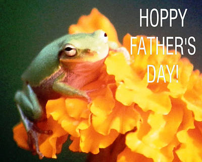 Photograph - Hoppy Fathers Day by Belinda Lee