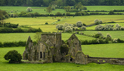 Photograph - Hore Abbey Ireland by Dick Wood