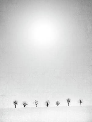 Winter Trees Photograph - Horizon by Jeffrey Hummel