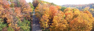 Mixed Media - Horizontal Panorama Fall Colors Trees Lion River Creek Trail Oakville Ontario Canada  Photography Di by Navin Joshi