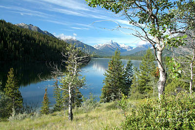 Photograph - Horn Lake by Frank Townsley