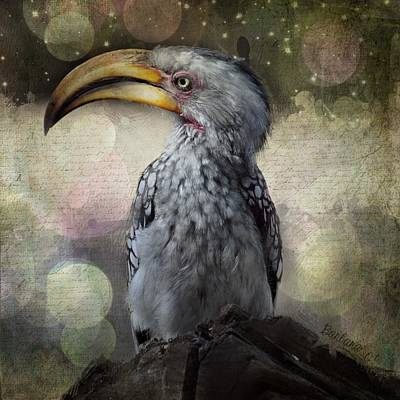 Hornbill Digital Art - Hornbill by Barbara Orenya