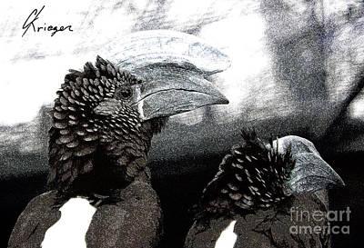 Hornbill Digital Art - Hornbill by Christopher Krieger