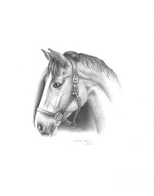 Horse Portrait Drawing Drawing - Horse-2 by Lee Updike