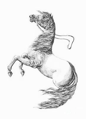 Digital Art - Horse 423-08-13 Marucii by Marek Lutek