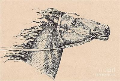 Digital Art - Horse 424-08-13 Marucii by Marek Lutek