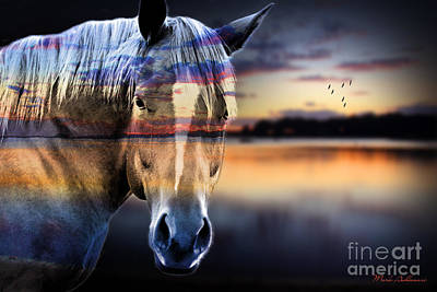 Wild Horse Digital Art - Horse 6 by Mark Ashkenazi