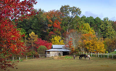 Photograph - Horse And Barn In The Fall 3 by Duane McCullough