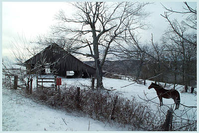 Barns In Snow Photograph - Horse And Barn In Winter by Bob Weibler
