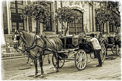 Horse And Buggy In Sevilla - Spain Art Print by Madeline Ellis