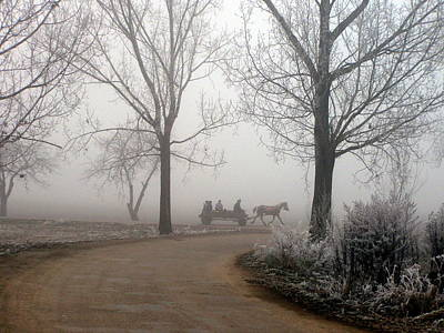 Photograph - Horse And Buggy In The Fog by Tamyra Crossley