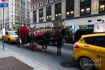 Taxi Photograph - Horse And Carriage Nyc by Amy Cicconi