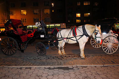 Photograph - Horse And Carriage On The Circle by Terry Wallace