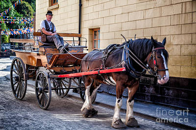 Victorian Town Digital Art - Horse And Cart by Adrian Evans