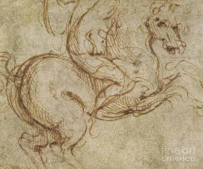 Soldiers Drawing - Horse And Cavalier by Leonardo da Vinci