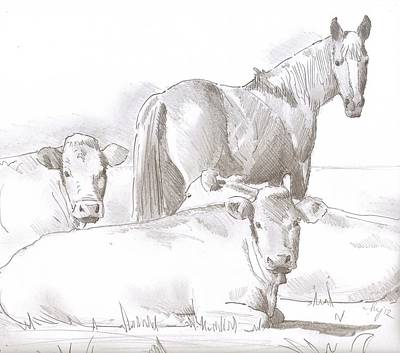Drawing - Horse And Cows Sketch by Mike Jory