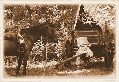 Photograph - Horse And Wagon  by Sheri McLeroy