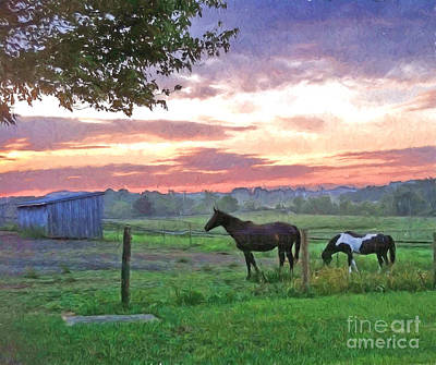 Photograph - Horses At Dawn by Kerri Farley