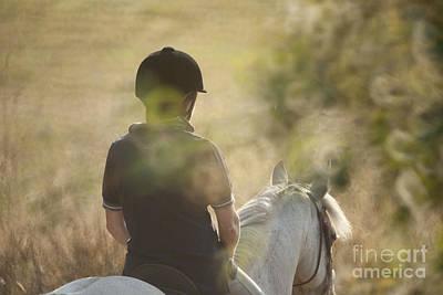 Horse Back  Original by Graham Foulkes
