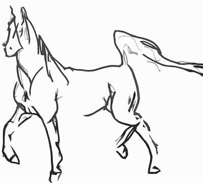 Drawing - Horse Back  by Jerry Cordeiro