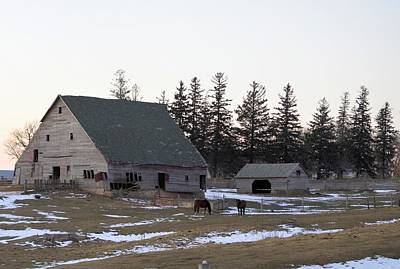 Photograph - Horse Barn by Bonfire Photography