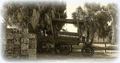 Photograph - Horse Buggy And Crab Traps by Sheri McLeroy