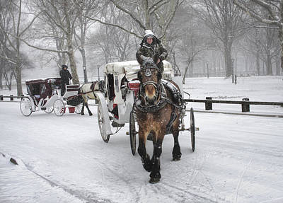 Photograph - Horse Carriages In Snowy Park by Dave Beckerman