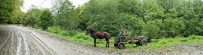 Romania Photograph - Horse Cart At Roadside, Bradu, Arges by Panoramic Images