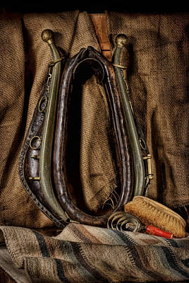 Horse Collar And Hames With Curry Comb And Dandy Brush Art Print by Leah McDaniel