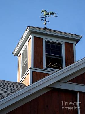 Photograph - Horse Cupola by Kerri Mortenson