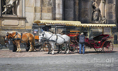 Photograph - Horse Drawn Carriage by Jutta Maria Pusl