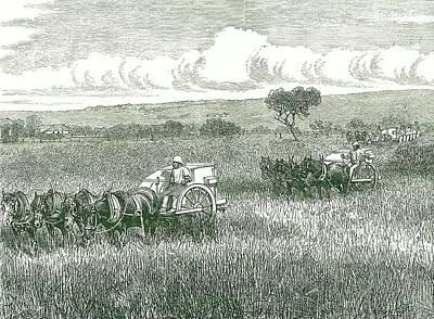 Horse-drawn Mechanical Harvesters Art Print
