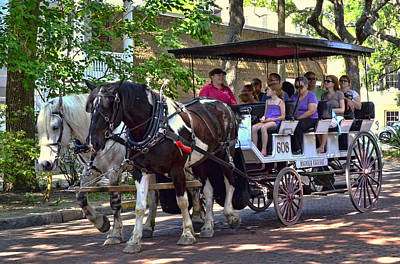 Photograph - Horse Drawn Tourist Carriage by Allen Beatty