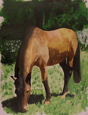 Horse Art Print by Isabella F Abbie Shores FRSA